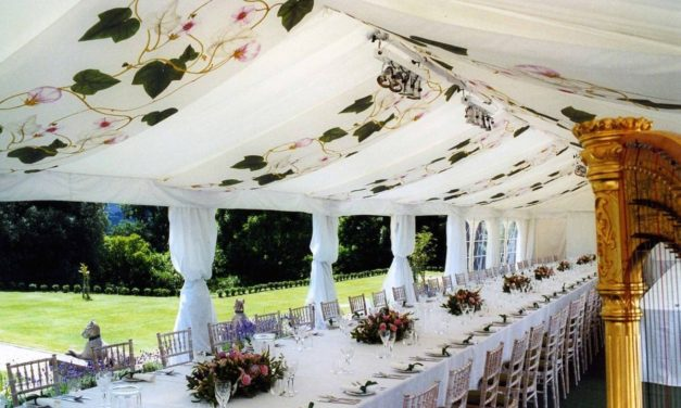 E2 Visa for Event Decorating and Design Business Approved for Dual Indian and Canadian National